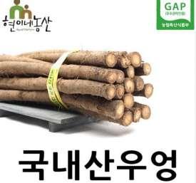 [현이네농산] 국내산 생우엉 차용/조림용 알뜰형 2Kg